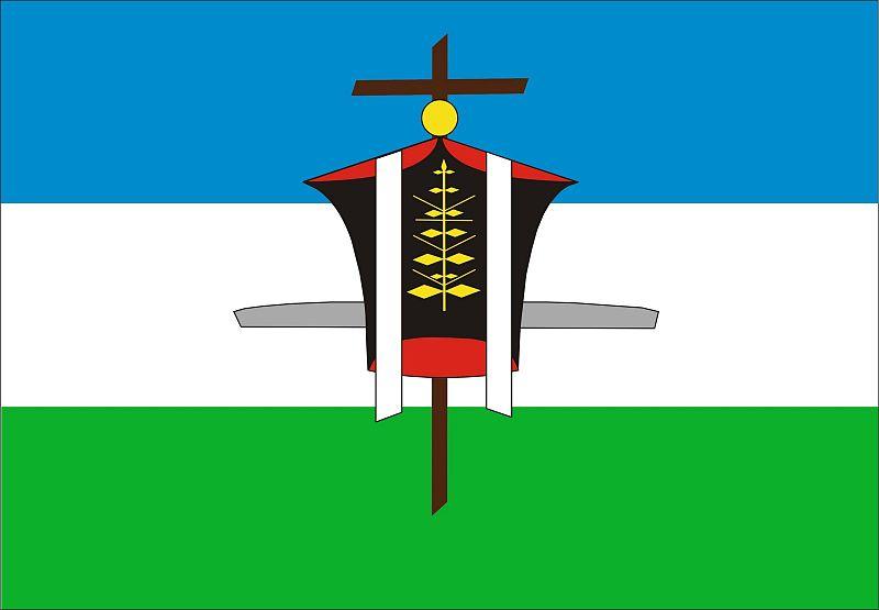 Bandera de La Playosa